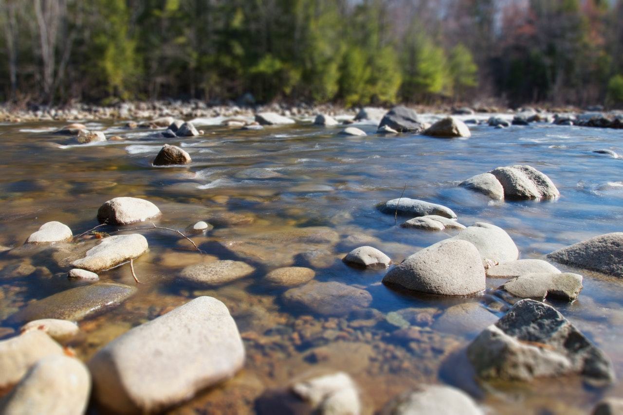Exploring Toronto's Forgotten Watershed