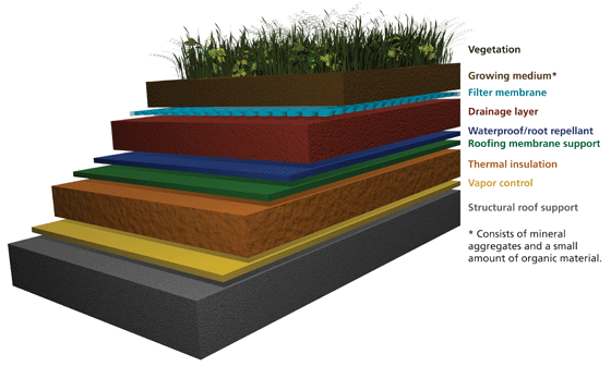 What is a Green Roof—Technical Preservation Services, National ...