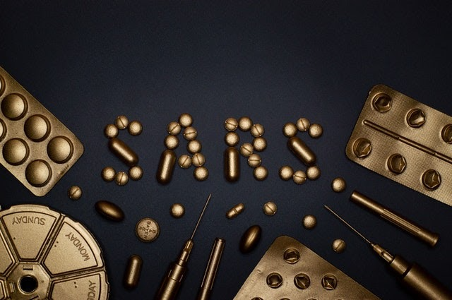 Lessons Learned from SARS