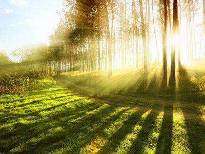 Spiritual Ecology: A Revolution for Environmental Change