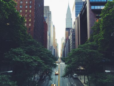 An Ecologist's Guide to the City