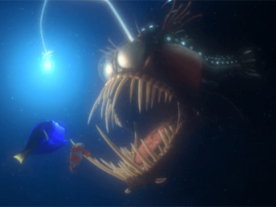 Animated Movies and the Science Behind Them