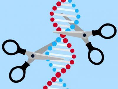 CRISPR-Cas 9: The Gene Editing Tool That Could Revolutionize Genetics