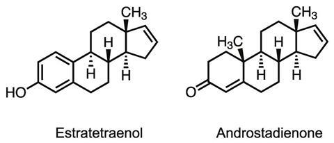 2D structures of estratetraenol and androstadienone