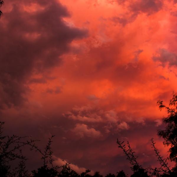 Crimson Sky
